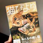 猫びより 雑誌掲載